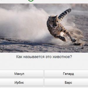 171Screenshot_171